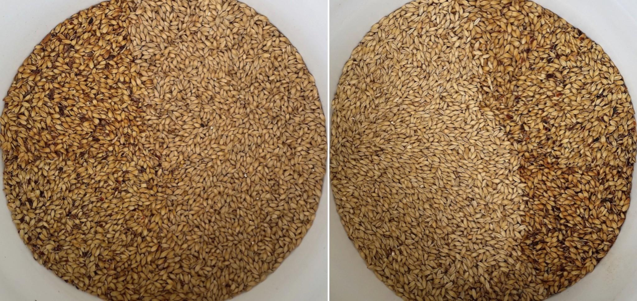 grain comparison maris otter vs domestic us 2 row exbeeriment