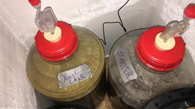 Image Result For How Much Yeast Cake To Pitch