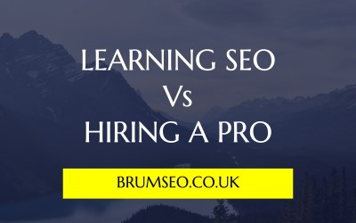 SEO – DIY vs. The Professionals