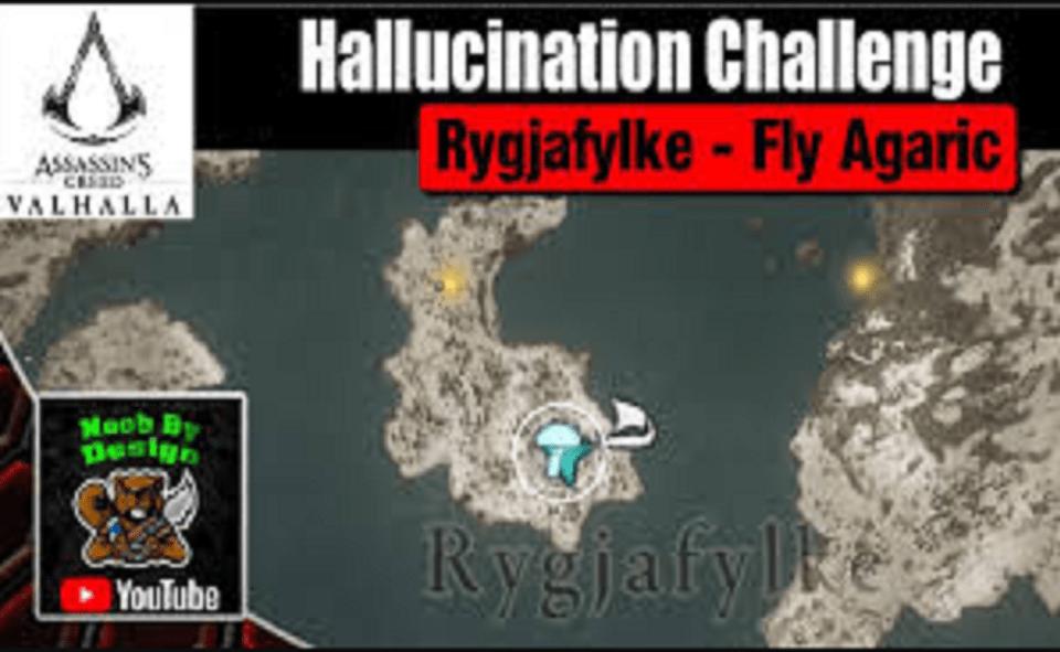 Image Of What Is Valhalla Hallucination Challenge.