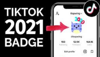 TikTok 2021 Badge