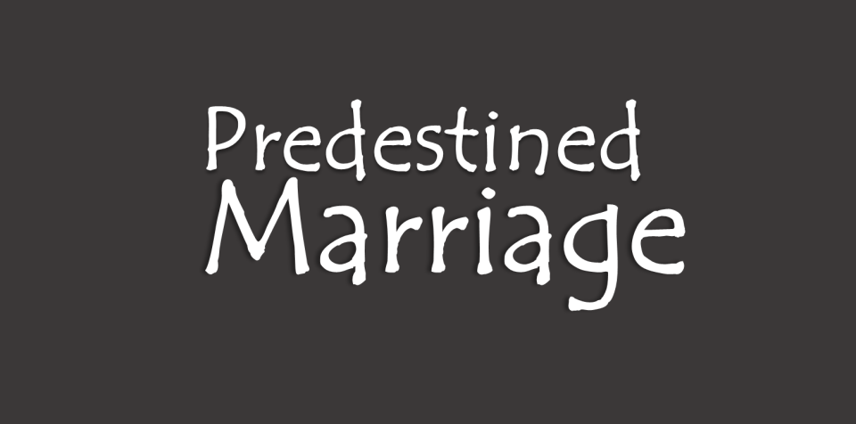 Image of Predestined Marriage