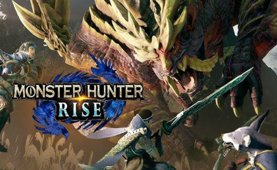 Image Of What Is Monster Hunter Rise Amiibo Bin
