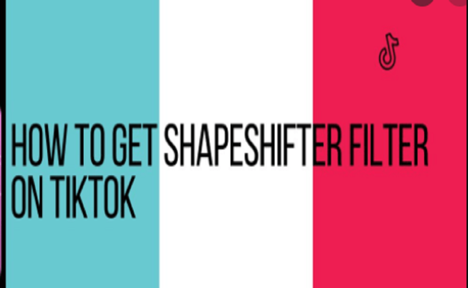 Image Of How To Use The Filter