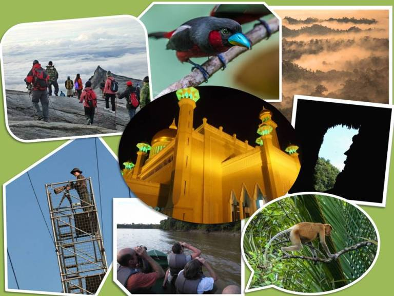 Tailor made packages Borneo