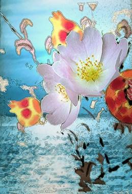 mer fleur1