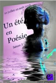 Affiche Un été en Poésie_Copyright Bruno Rigolt_2016-07_a