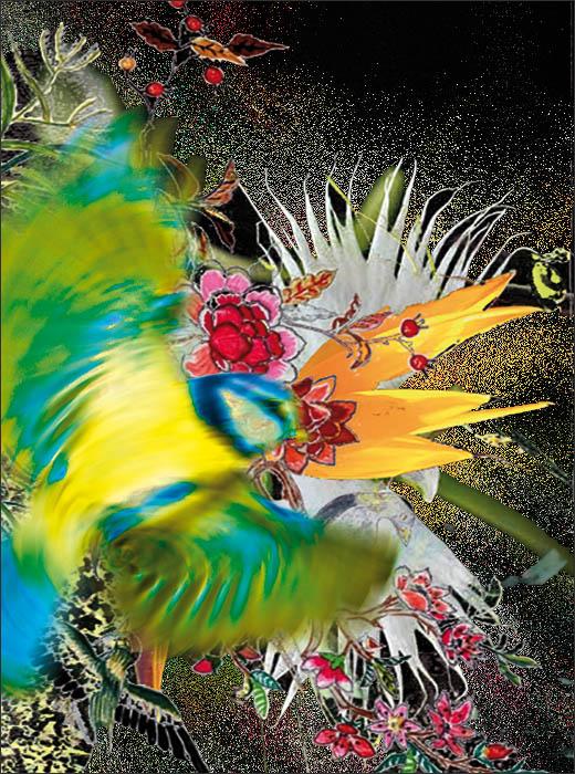 oiseaux_fleurs_web