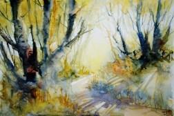 274_2016 Watercolor-Sketches /Marabu Mixed Media 21,0 x 14,8 cm / 8.3 x 5.8 in / Lukas Aquarell 1862