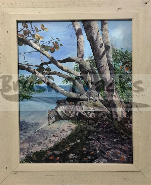 A painting called Seagrapes and Mangroves
