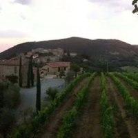 La Palazetta produces Brunello di Montalcino DOCG #Palazzetta #company #wine