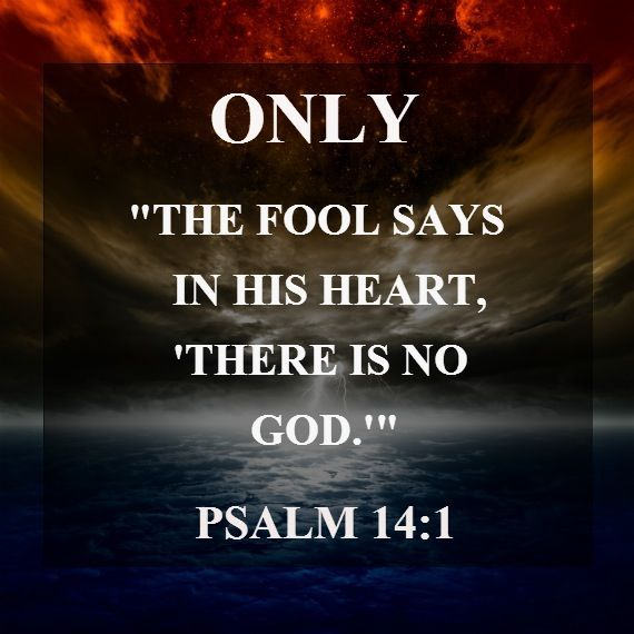 Only A fool