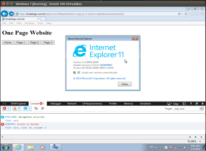CORS Enabled XSS - Brute XSS