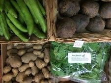 More new potatoes, broad beans, beetroot and baby spinach leaves