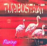 turbostaat_flamingo