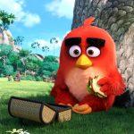 angry-birds-der-film-vorschau