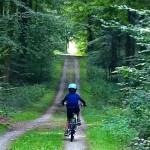 forêt de soignedeでお散歩