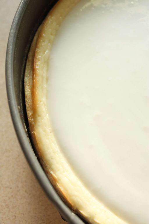 עוגת גבינה קרמית עם ציפוי יוגורט