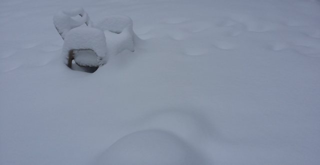 snow versus summer chair