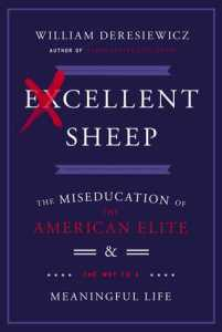 _Excellent Sheep_