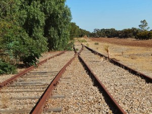 Michael Coghlan, photo of merging railroad lines