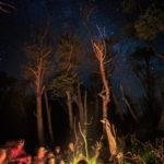 gregson_night-scape-109