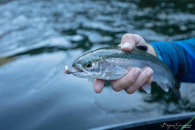 Gregson_Bryan_Rogue River Blog-100