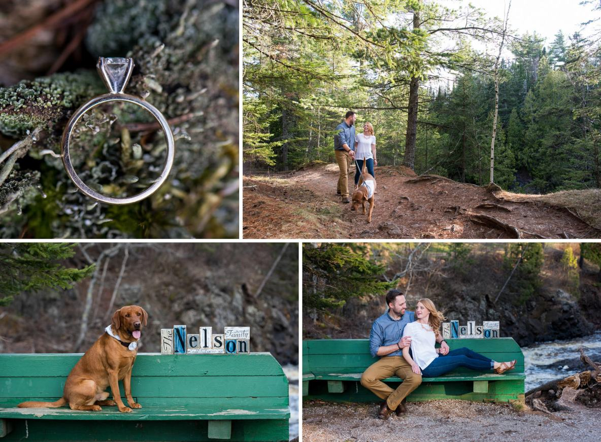 Engagement photos with red lab at Lester Park in Duluth, MN.