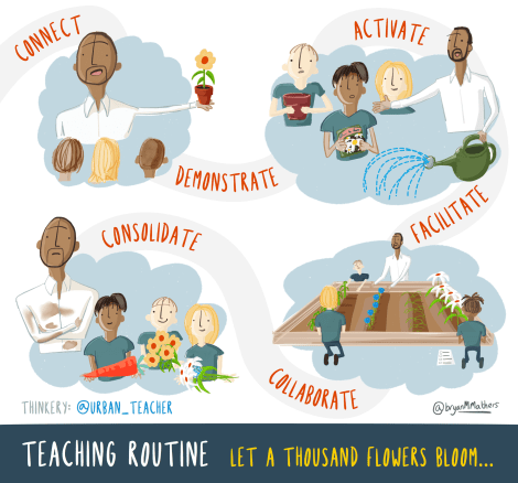 Teaching Routine - let a thousand flowers bloom