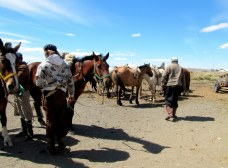 """Horseback riding in Patagonia, Argentina, from """"Avoid Tourist Traps"""""""