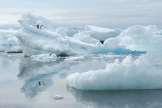 """Adélie penguins and iceberg, Brown Bluff, Antarctica, from """"Make Sure You Have a Map"""""""