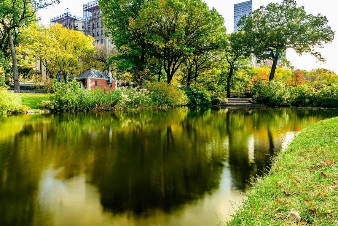 Central Park, Harlem Meer and Maoz Vegetarian