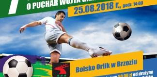 7 TURNIEJ-2018 o Puchar Wójta Gminy Brzozie