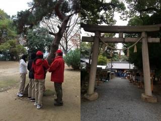【御殿山神社】焚き火だ焚き火だ落ち葉焚き、という風情最近は活動が盛ん。