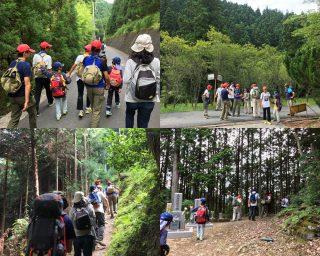 【里山から入山】細かい「生活道路」があってなかなか登山道にたどり着きませんでした。