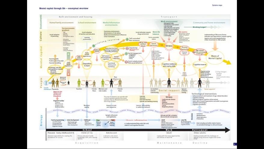 Mental Capital through life - conceptual overview