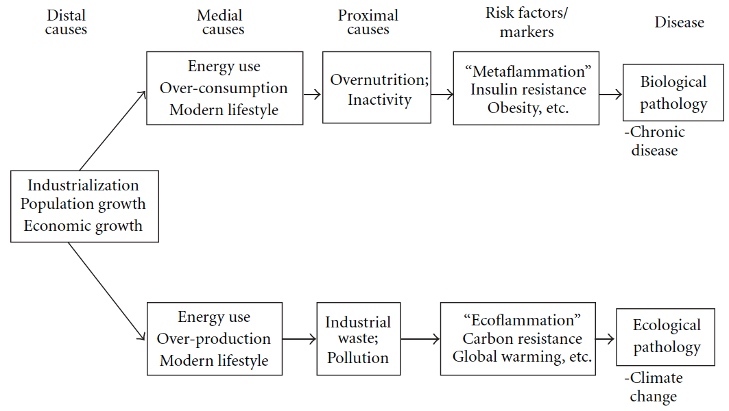climate_globalisation
