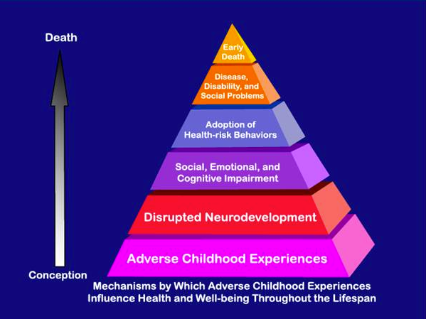 Adverse Childhood Experiences study  (ACEs) Resources