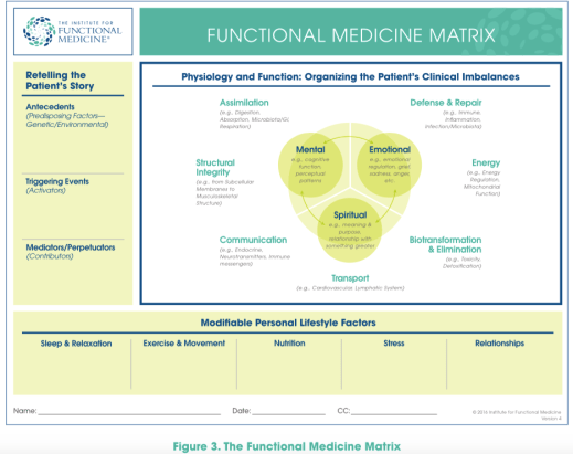 functional-medicine-matrix