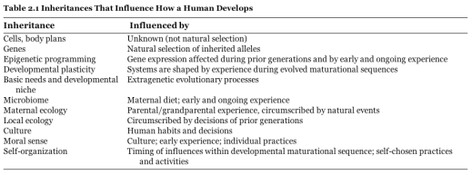 Inheritances That Influences How a Human Develops.png