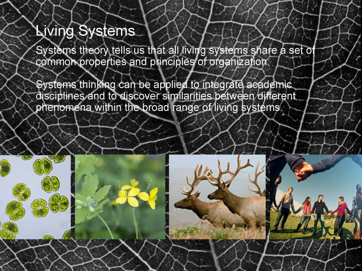Fritjof_Capra_The-systems-view-of life_I_Page_11