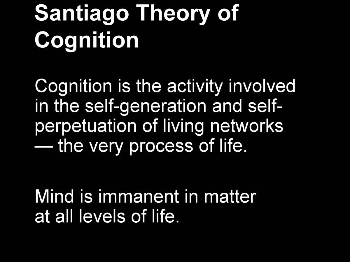 Fritjof_Capra_The-systems-view-of life_I_Page_35