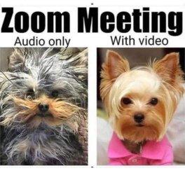 ZoomVideo