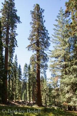 California_20140909_194