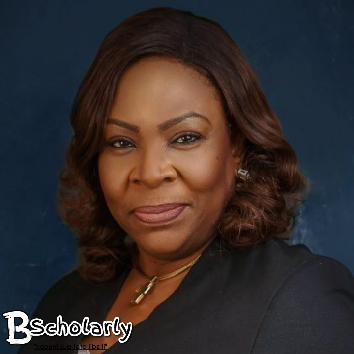 most influential lawyers in Nigeria
