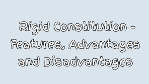 Advantages and Disadvantages of a rigid constitution