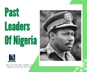 Olusegun Obasanjo past leader of Nigeria