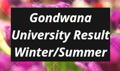 Gondwana University Result 2021