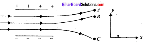 Bihar Board 12th Physics Objective Answers Chapter 1 वैद्युत आवेश तथा क्षेत्र - 4