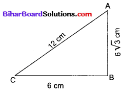 Bihar Board Class 10 Maths Solutions Chapter 6 त्रिभुज Ex 6.5 Q17